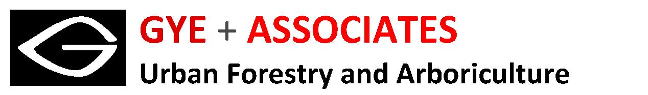 Gye & Associates logo